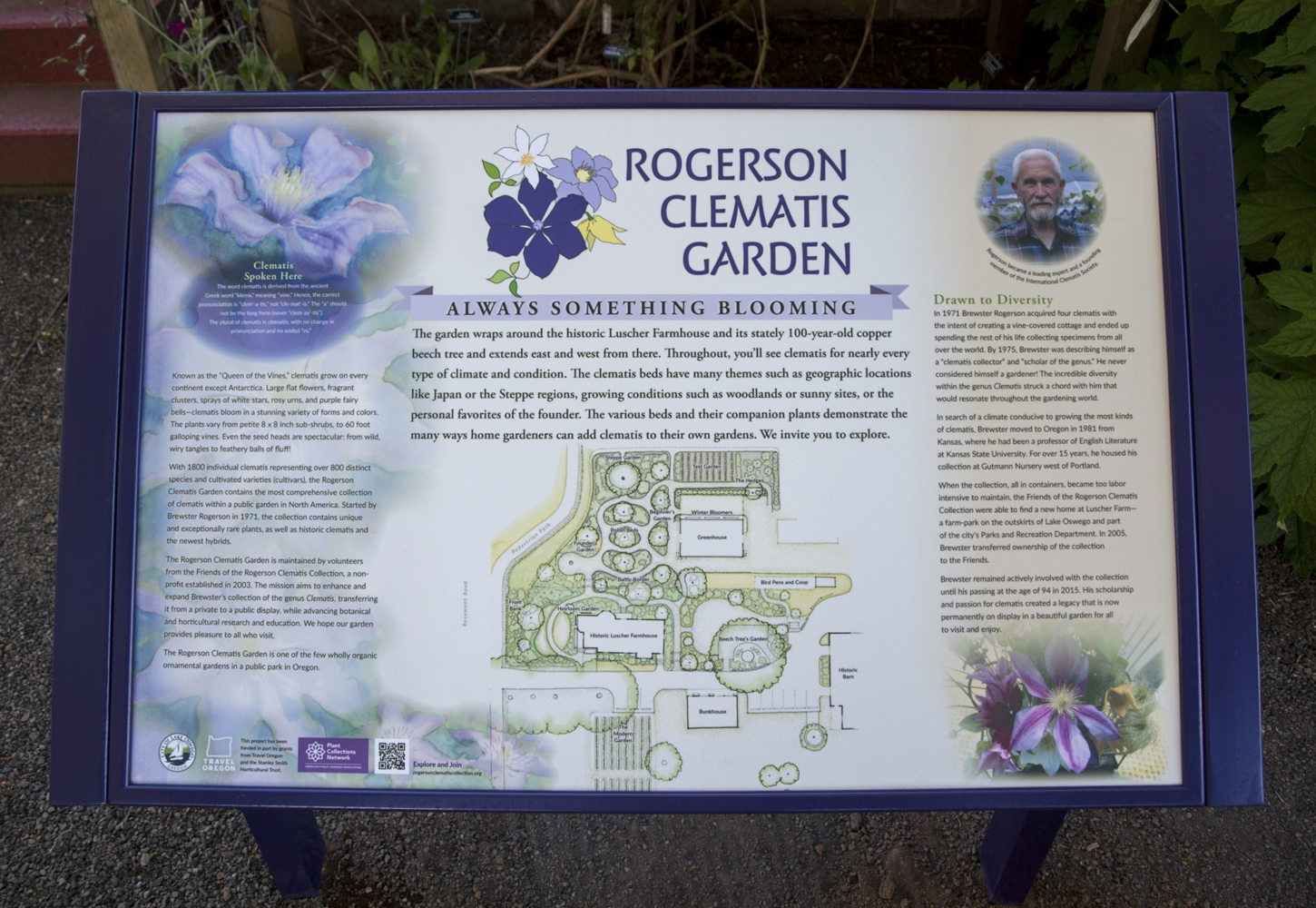 Rogerson Clematis Garden - Introduction Panel 2
