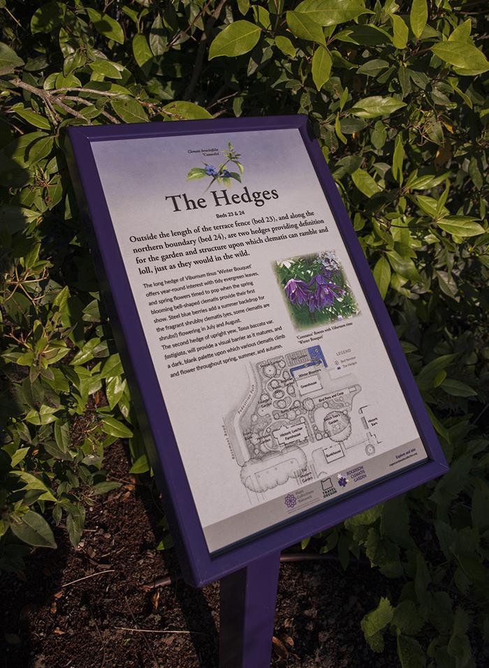 Rogerson Clematis Garden - The Hedges Garden Sign